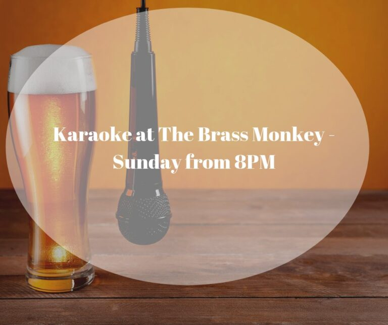 Local Pubs in Southampton - The Brass Monkey - Karaoke This Sunday From 8pm