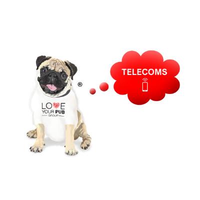telecom-pierre-400