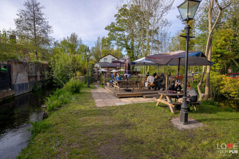 Restaurants With Music In Winchester - Timeless Visit The Willow Tree !